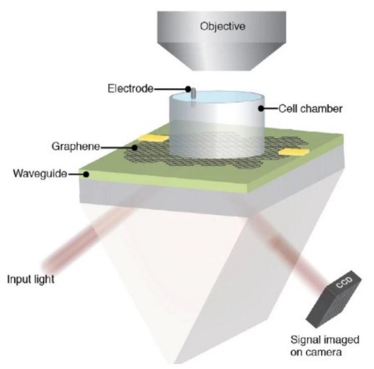 cámara de grafeno