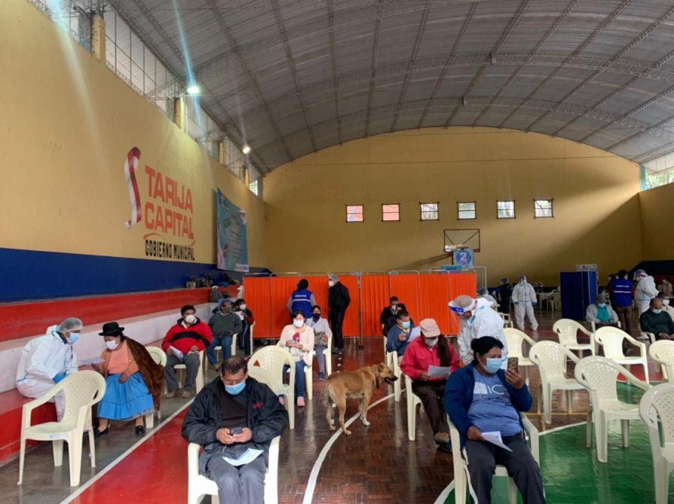 Tarija empezará a vacunar según la terminación de la cédula de identidad