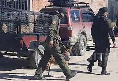 Efectivos policiales usaron canes adiestrados para la búsqueda de cuerpos