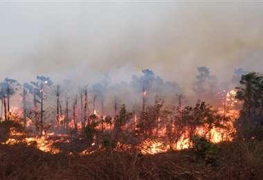 Los incendios ya se iniciaron en Santa Cruz. Foto archivo: fundacionsolon.org
