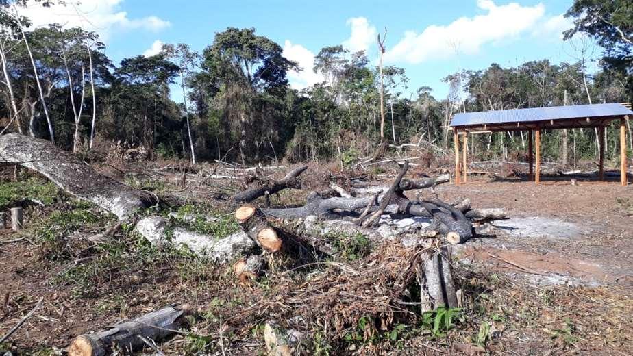 Asentamientos ilegales en la reserva Bajo Paraguá en San Ignacio/Foto: Carlos Quinquiví