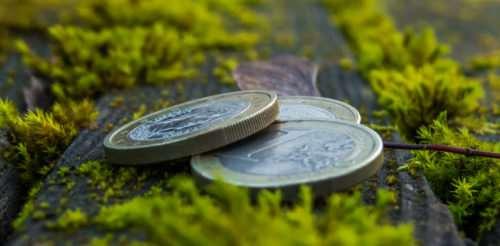 En 2020, se emitieron $us 255.000 millones en bonos verdes en promedio en todo el mundo