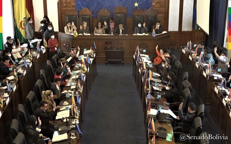 Cámara de Senadores conforma sus comisiones y comités para la legislatura  2020 – 2021 | Cámara de Senadores