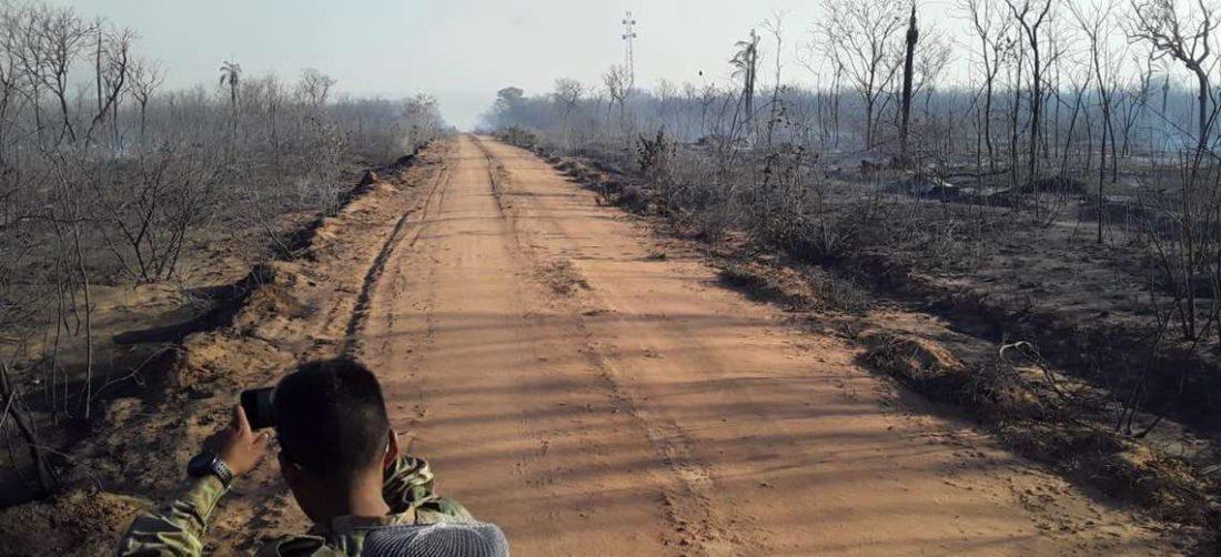 Los incendios arrasan con hectáreas de bosques y pastizales Foto: Gobernación