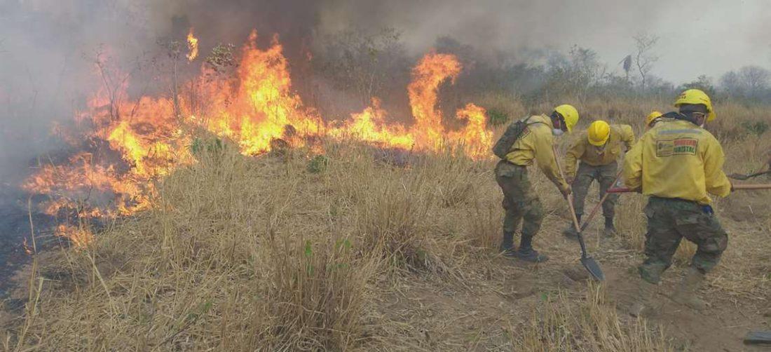 Bomberos tratan de controlar el fuego en Roboré. Foto: ARCHIVO