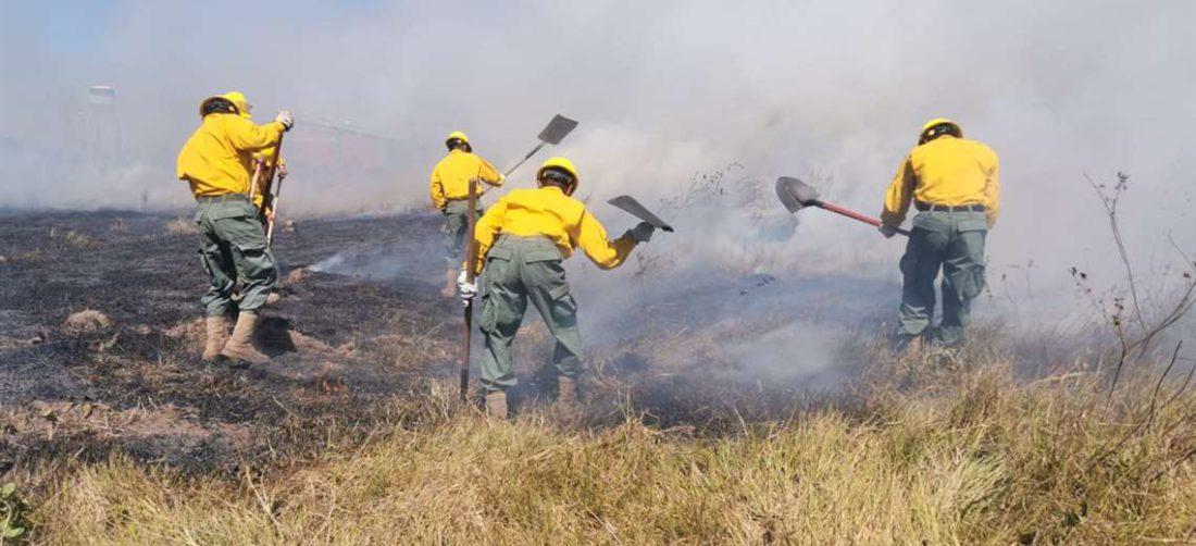 Bomberos y militares luchan por evitar que las llamas afecten al mercado campesino.