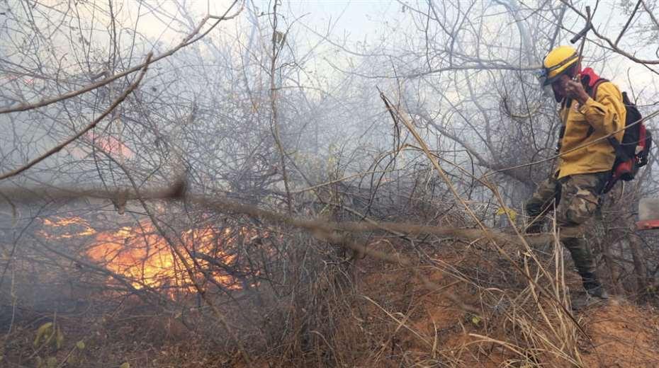 Foto archivo El Deber: San Matías es el municipio cruceño más afectado por los incendios.