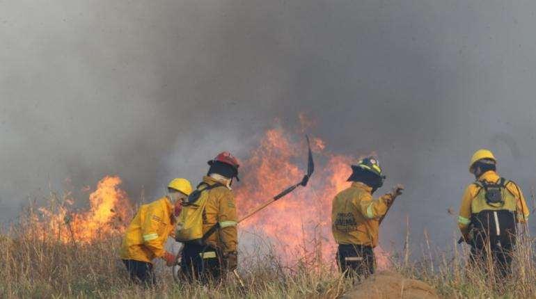 Bomberos combaten las llamas en Roboré. Foto: APG