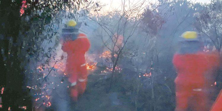 Peligran 30 municipios  por incendios forestales