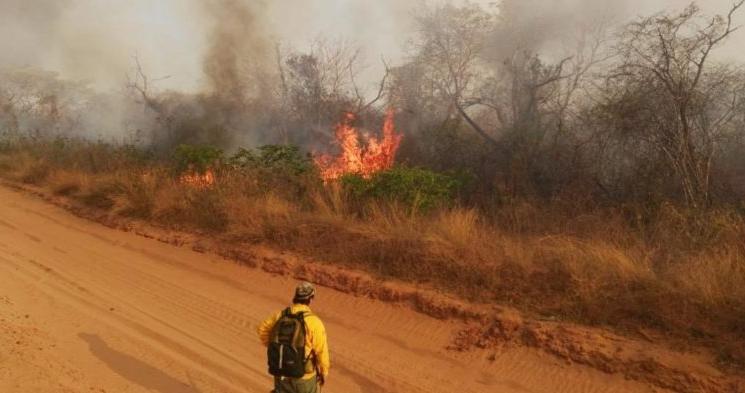 Tres incendios forestales persisten en el departamento. ARCHIVO