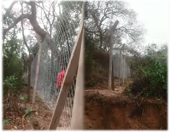Así está enmallado una parte del cordón ecológico de Santa Cruz