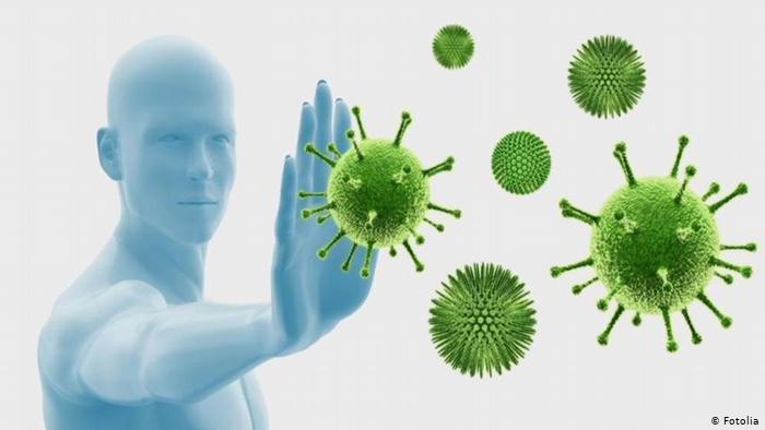 17.12.2014 DW Fit & Gesund Immunsystem