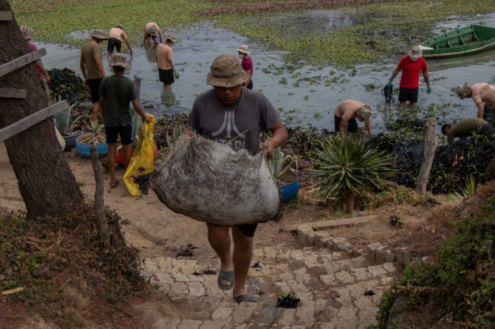 Bioparque de Tarija recibirá a 20 primates afectados por incendios forestales de Santa Cruz