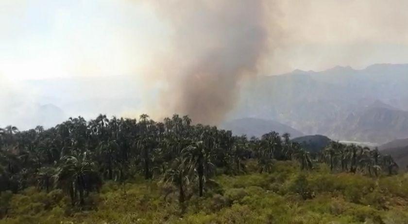 Defensa Civil ordena sobrevuelo a El Palmar para definir acciones de sofocación del fuego