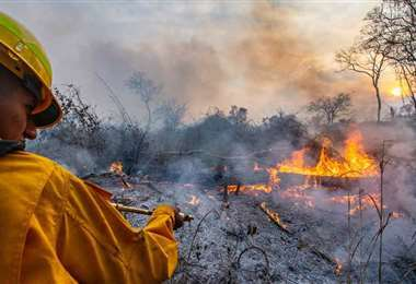 Más de 400 personas luchan contra las llamas en el departamento (EL DEBER)