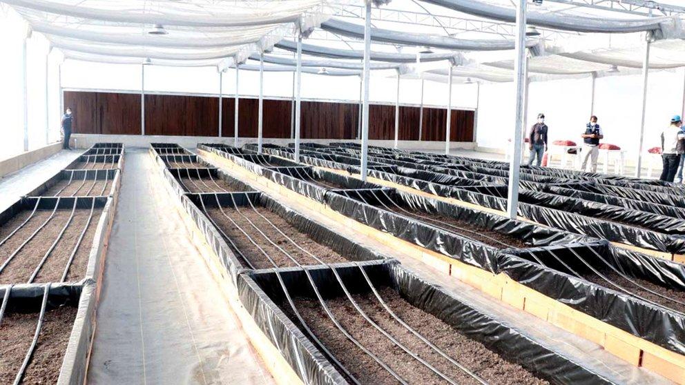 El Centro de Producción de Semilla de Papa, el martes.  ALCALDÍA DE SACABA