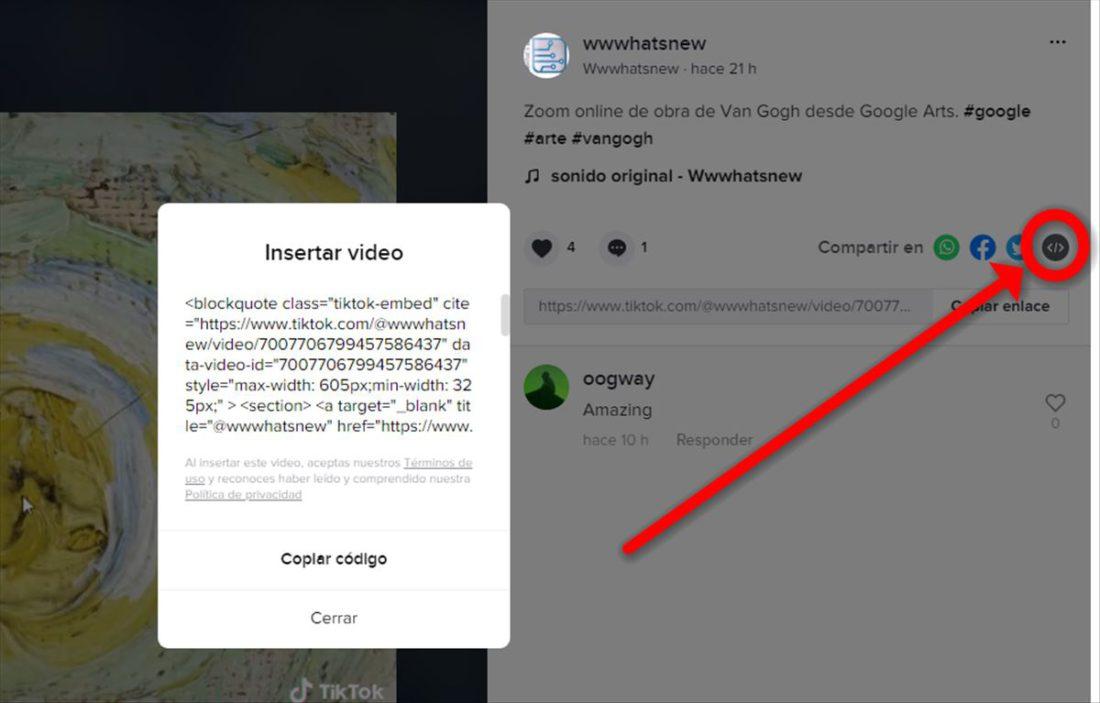 Cómo poner vídeos de TikTok en páginas AMP