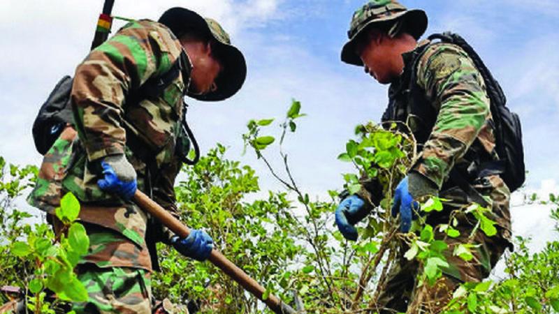 EEUU afirma que Bolivia falló en tres  acciones  antidroga