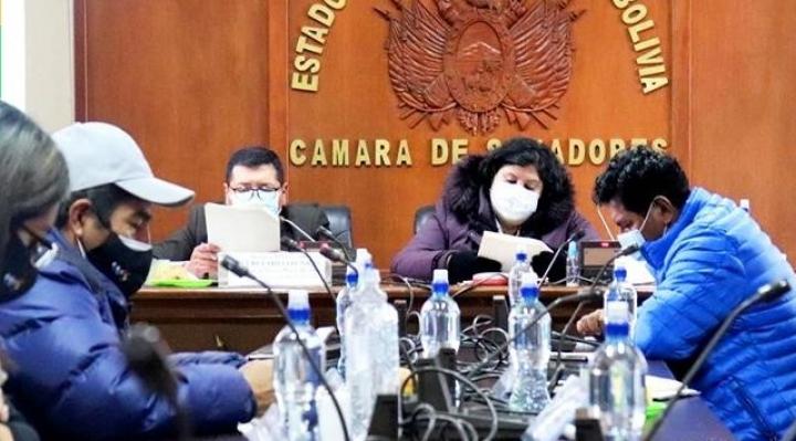 Trámite de juicio contra Añez por Sacaba y Senkata tuvo paso fugaz en la Justicia; el Legislativo lo frenó
