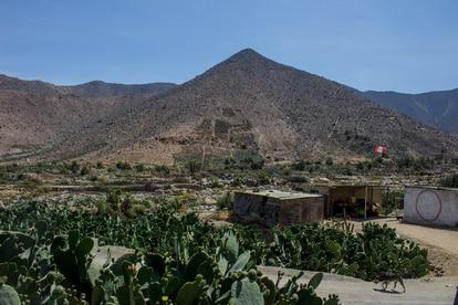 En un reservorio subterráneo, los campesinos almacenan el agua de la temporada de lluvia que luego bombean con electricidad para regar sus cultivos de chumberas.