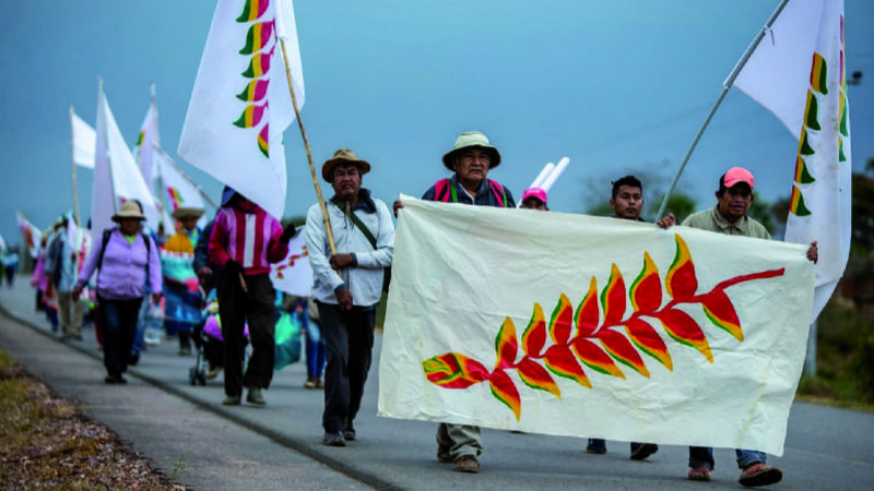 Principales conquistas indígenas, en retroceso por leyes aprobadas desde 2010