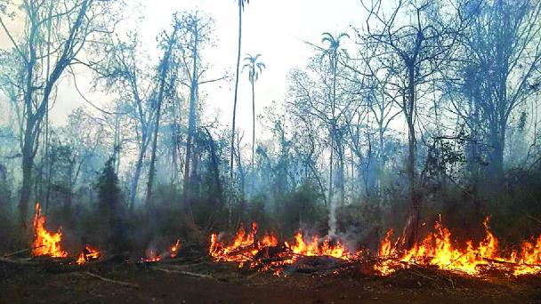 Defensa Civil realiza sobrevuelos en municipios cruceños para verificar incendios