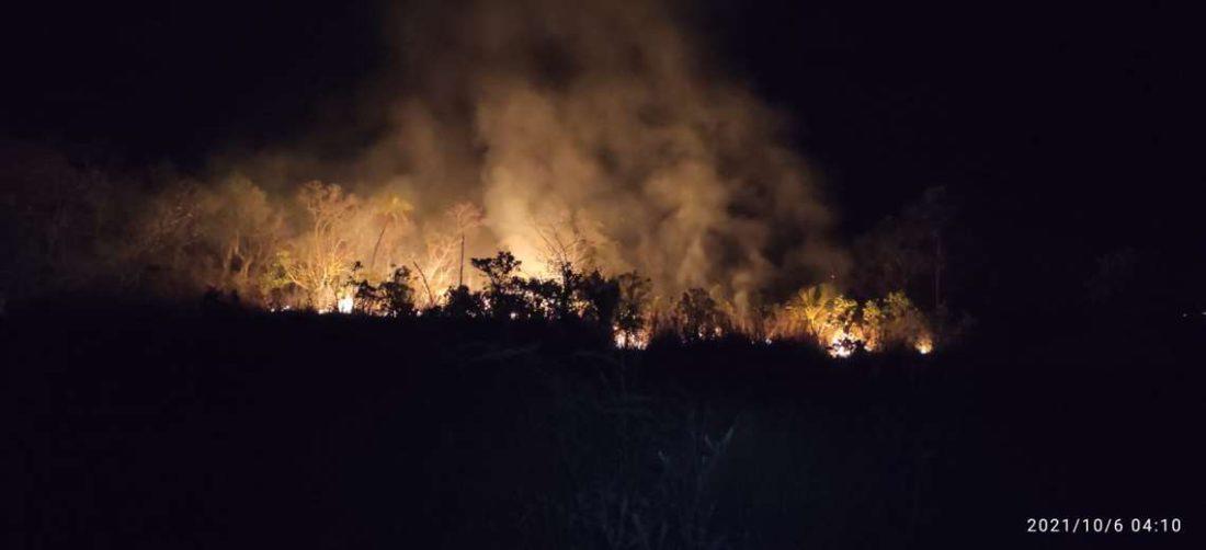 Son 14 los incendios que aún persisten en Santa Cruz.
