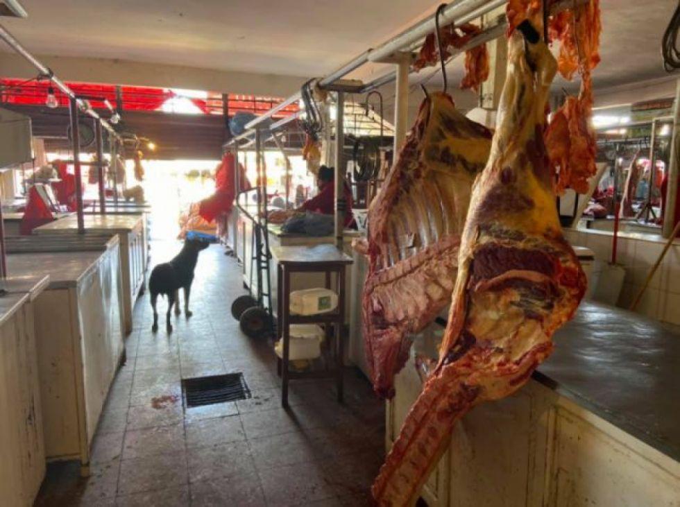 Intendencia comisó 65 kilos de carne descompuesta del mercado Cercat en Tarija